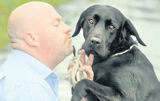 "Assistant dog warden Gary Gordon with Woody, who he describes as a ""brilliant, beautiful dog"""