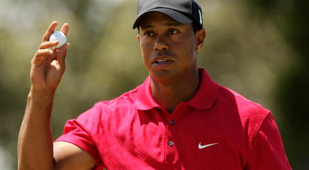 Tiger Woods issued an extraordinary apology on his website as the fallout from last weekend's car crash at his Florida home continued