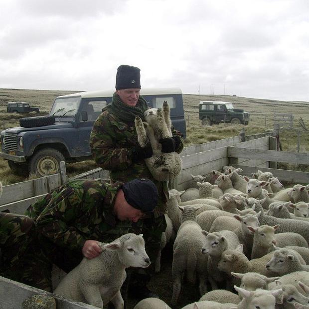 British soldiers were asked to help two stricken farmers in the Falkland Islands