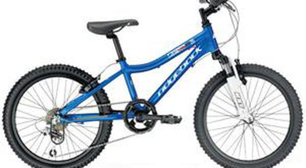 <b>Ridgeback MX20</b> When boys hit six or seven, chances are they'll want a mountain bike more than anything else in the world. The ideal is a bike that's engineered to take inevitable knocks, but with a light aluminium frame. The Ridgeback MX20 has all this and features an anti-skid brake modulator. Price: £219.19 Ridgeback.co.uk