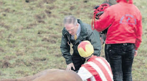 Jockey Andrew Lynch tends to the fallen horse