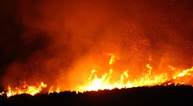 Gorse fires in County Down