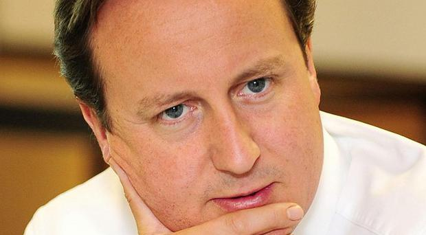 David Cameron has insisted he was up to the job of prime minister.