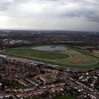 Hundreds of horse racing fans will have the chance to run the final furlong at Kempton