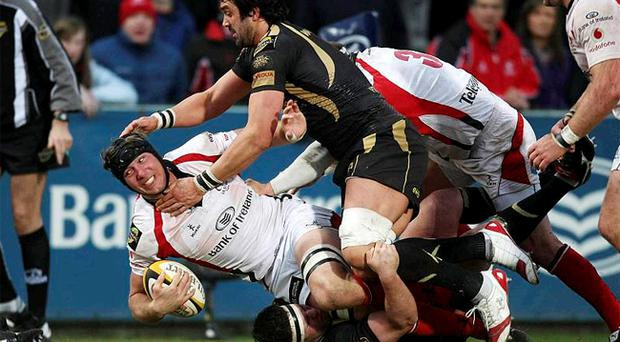 Stephen Ferris has recovered from a rib injury and is expected to face Edinburgh at Murrayfield