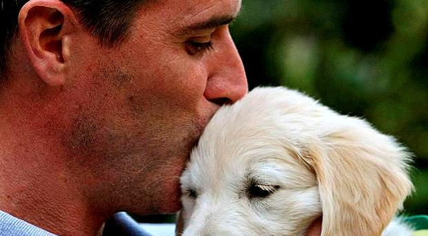 Roy Keane, former Republic of Ireland star and current Ipswich Town manager, with puppy Verna at launch of Irish Guide Dogs for the Blind's Super Value Shades 2010 campaign yesterday