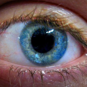 The Government has been accused of doing nothing to tackle incidences of blindness