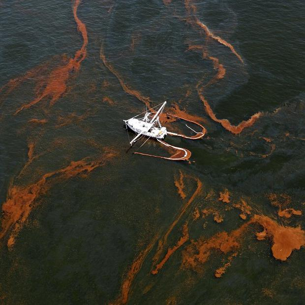 Oil in the Gulf of Mexico after the rig blew up and sank