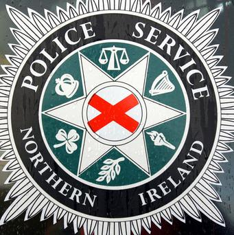 A man has been arrested after a stabbing in Co Down