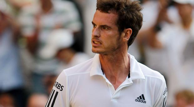 Andy Murray of Great Britain celebrates winning his match against Sam Querrey of USA on Day Seven of the Wimbledon Lawn Tennis Championships at the All England Lawn Tennis and Croquet Club on June 28, 2010