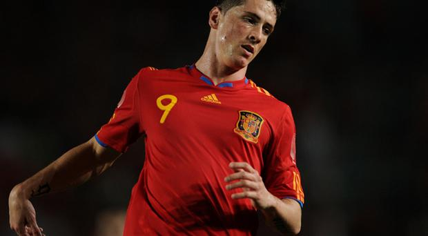 Will Fernando Torres play a part in Sunday's World Cup final?
