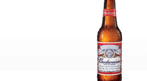 During the 1990s Budweiser ran a series of adverts where two beautiful women appeared in front of two truck drivers drinking the brew. <br/> Michigan man Richard Overton promptly bought a case of the beer, drank it and waited -- but no hot babes appeared. Cue lawsuit. Overton cited emotional distress and mental injury due to false advertising and wanted over $10,000 in damages. <br/> Thankfully, the court realised it would take a hell of a lot more than a case of Budweiser to get this loser a date and they decided to dismiss the case.
