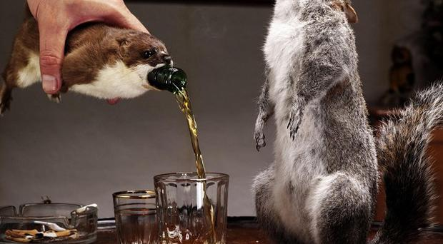 BrewDog's new super-strength ale will be sold inside dead stuffed animals