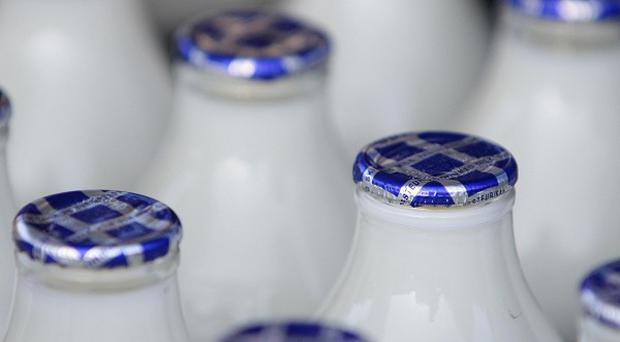 Adults need 700mg of calcium a day, which should come from dietary sources including milk