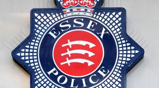 Essex Police are hunting intruders who violently attacked a man in his 60s during a raid on his home