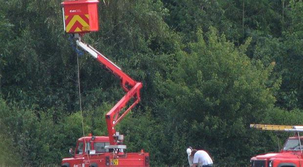 Electrical engineers at the scene of a crash in which a glider hit overhead power lines