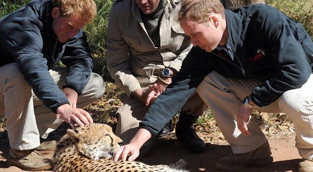 Prince William's trip to Africa will feature in a Sky1 documenrary