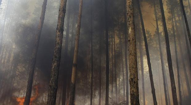 Wildfires across Russia