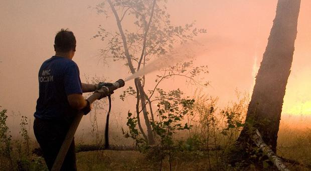 A firefighter attempts to extinguish a forest blaze near the village of Dolginino in the Ryazan region in Russia