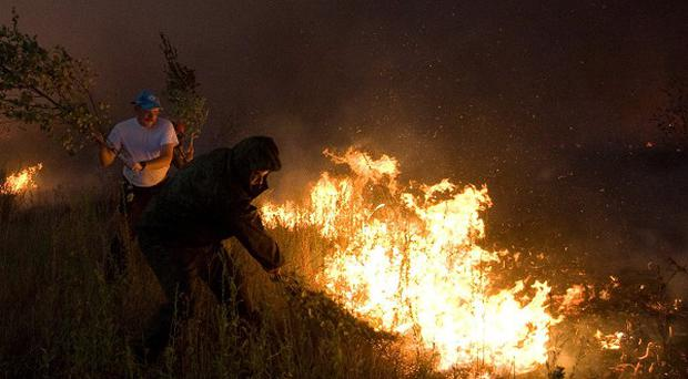 Citizens attempt to extinguish a forest fire near the Russian village of Dolginino (AP)