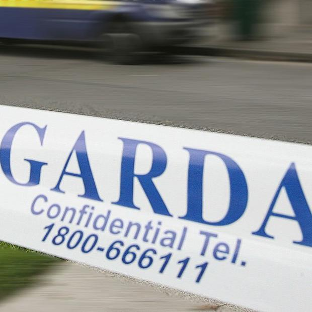 Gardai appealed for witnesses after an explosive device was thrown at a home