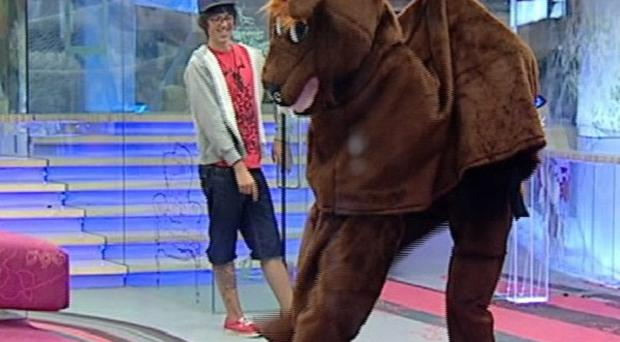 John James and JJ were the equine stars of the latest task