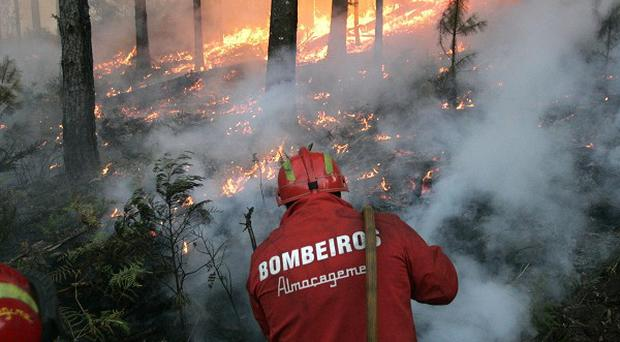 Firefighters tackle a blaze on the Peneda-Geres mountain in Portugal (AP)