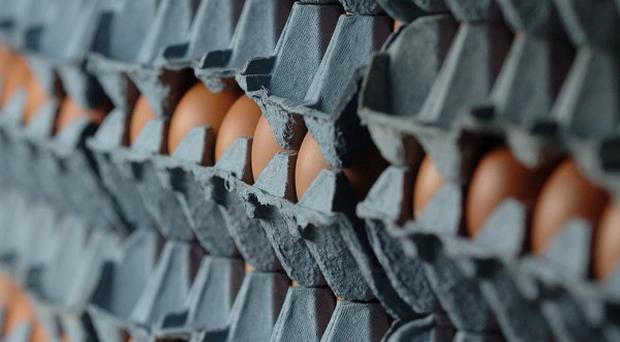 An Iowa egg producer is recalling 228 million eggs after being linked to an outbreak of salmonella