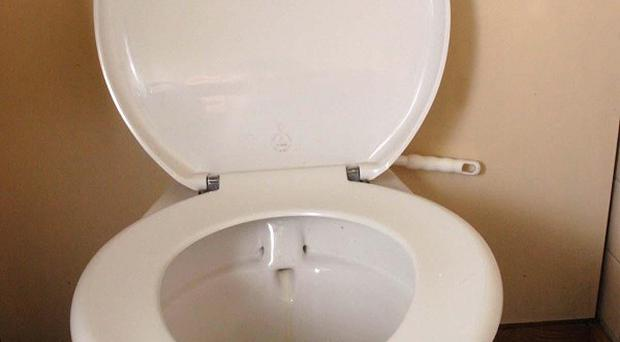 Men leaving the toilet seat up is their most annoying habit, according to a survey of women