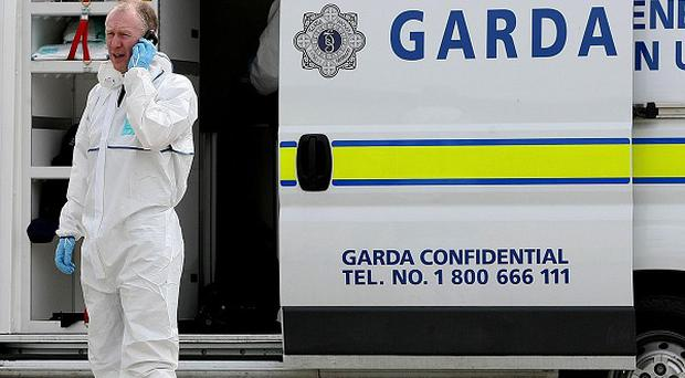 Army experts carried out a controlled explosion on a home-made bomb in Limerick