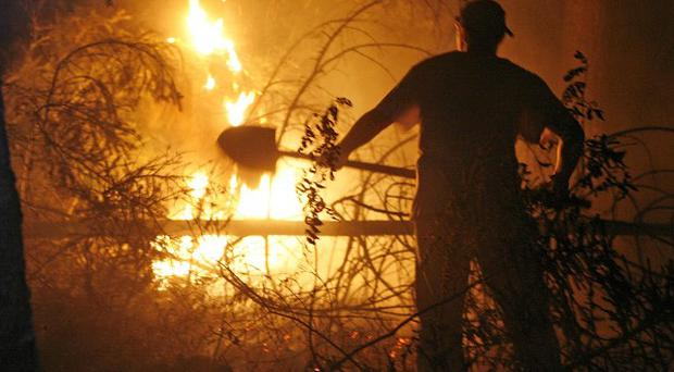 Eight people have died after fresh forest fires hit Russia