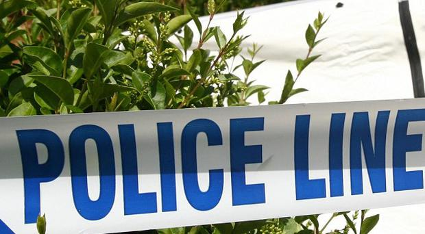 An elderly man found dead at a house was stabbed in the heart, police said