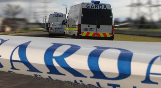 Five suspects are being questioned by gardai for a second day over the tiger kidnap