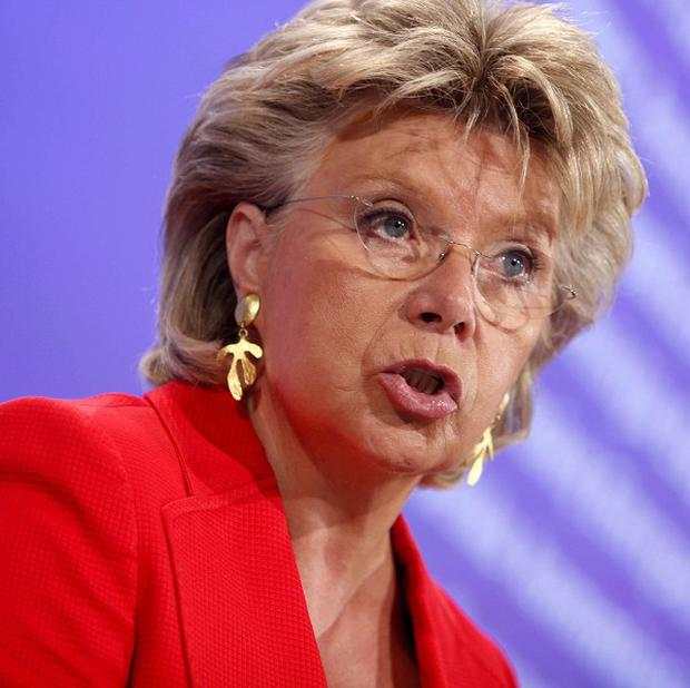 Viviane Reding has labelled France's expulsions of Roma people 'a disgrace' (AP)