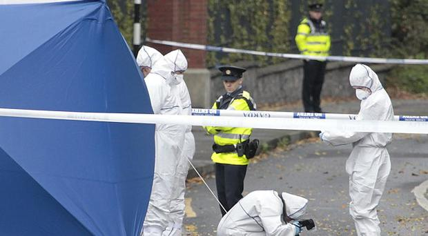 Ten people arrested over the gangland-style killing of a man in north Dublin have been released without charge