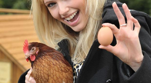 Leanne Fleck welcomes egg laying hens to Dobbies Garden World in Lisburn