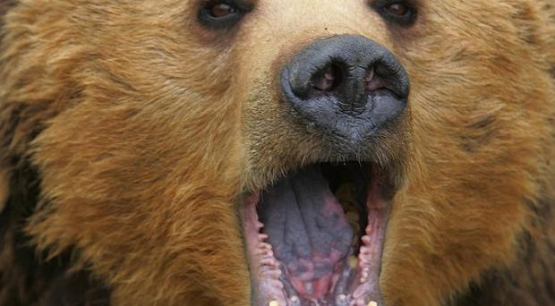 A woman who shot dead her husband after mistaking him for a bear has been found not guilty of criminal negligence