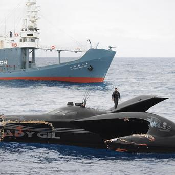 The skipper of a Sea Shepherd protest boat damaged in a collision said the head of the group ordered him to let the vessel sink (AP)