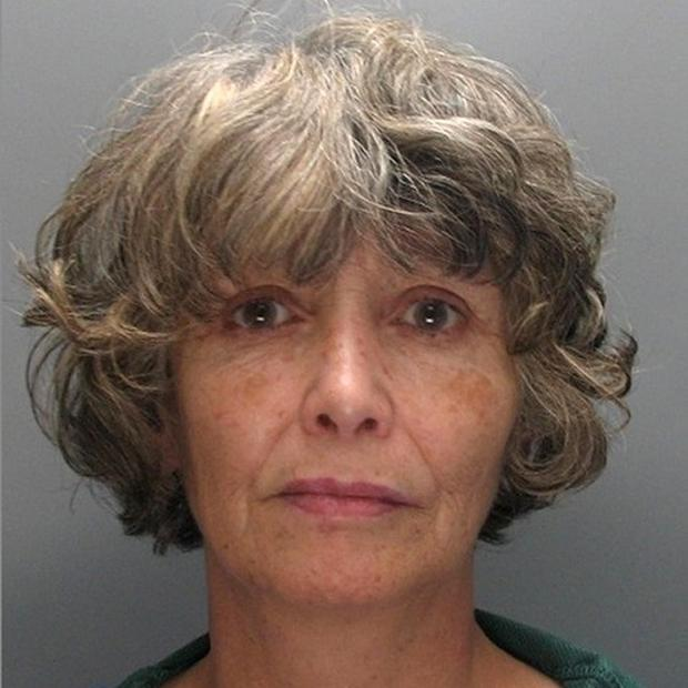 Frances Inglis, the mother who gave her brain-damaged son a lethal heroin injection to end his 'living hell' will challenge her conviction