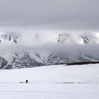 The effects of global warming are expected to be felt first in the Arctic