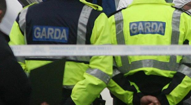 Man held over double killing of two brothers in west Dublin