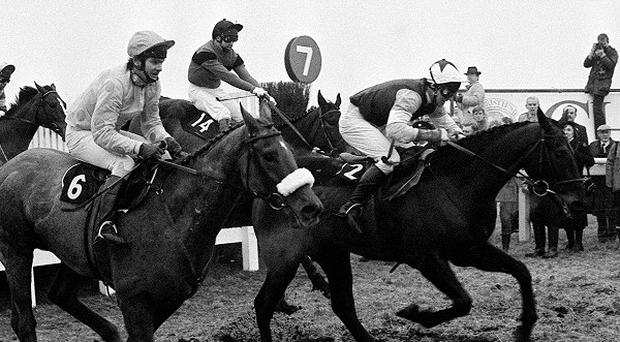 Dawn Run (far side, no. 14) en route to giving Paddy Mullins a Cheltenham Gold Cup triumph