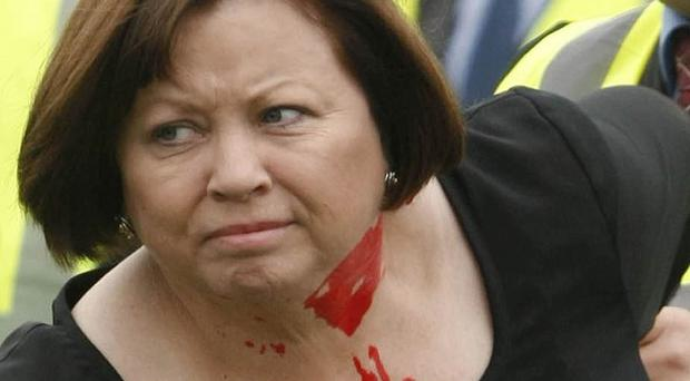 Protesters threw red paint at Health Minister Mary Harney in west Dublin over health budget cuts