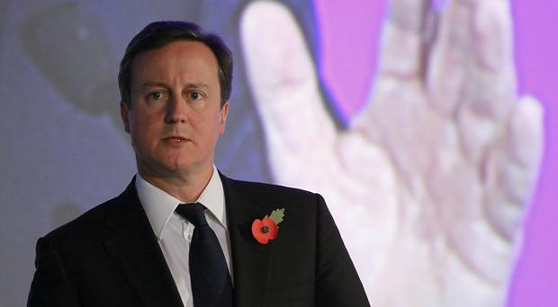 David Cameron at the the G20 summit in Seoul (AP)