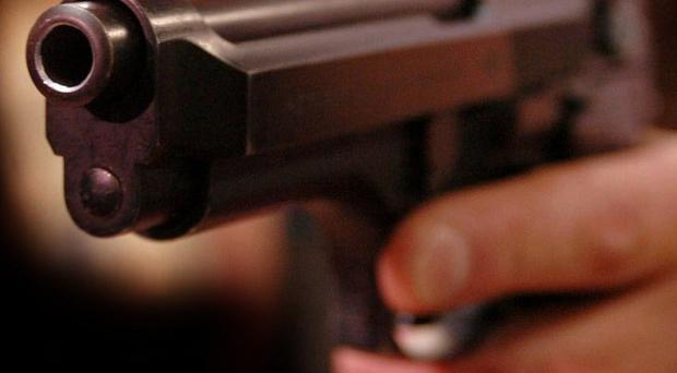 Gardai have arrested a Dublin man after two handguns and bullets were found on waste ground