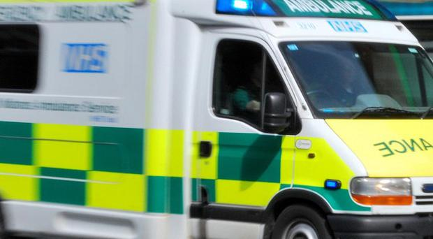 A driver died when his car collided with an ambulance on a village road