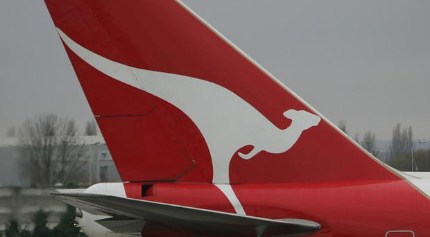 A bird and a bolt of lighting have struck two separate Qantas planes
