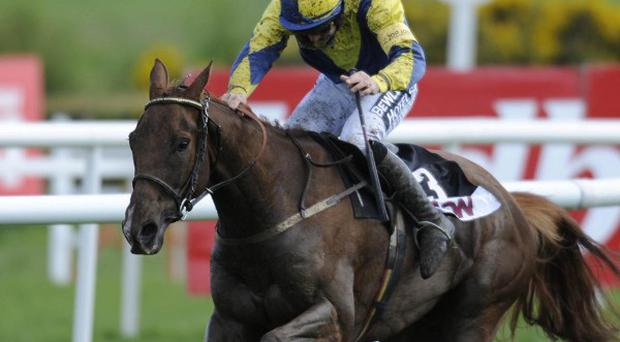 Ruby Walsh on Jessies Dream on his way to winning The AON Insurances Hurdle during the Punchestown Racing Festival at Punchestown Racecourse, Ireland.