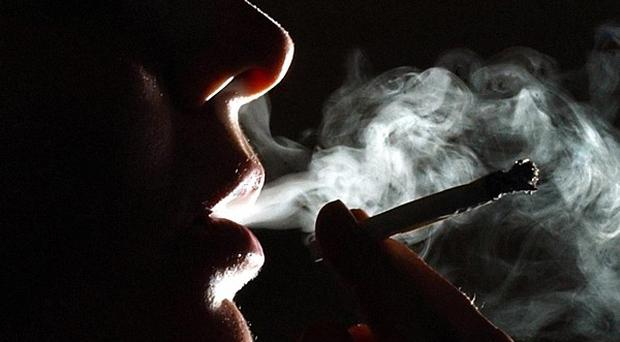 Smoking cannabis may weaken the body's resistance to cancer, scientists have found