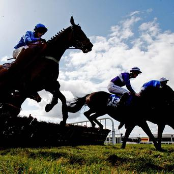 Fairyhouse action